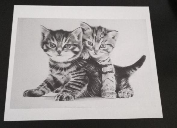 impresión en blanco y negro